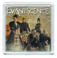 Магнит - Evanescence #1