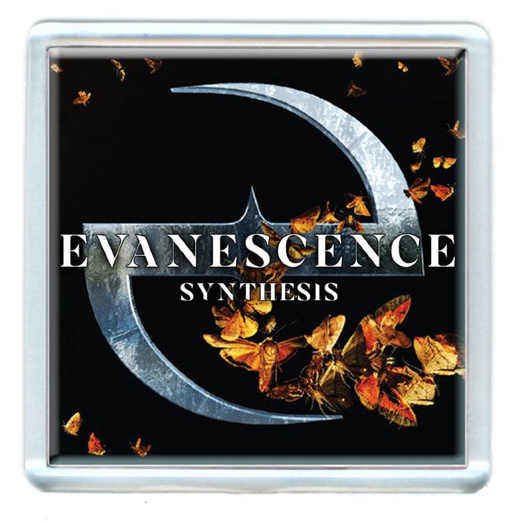Магнит - Evanescence #2